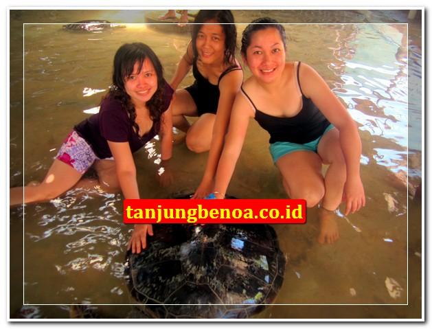 Pulau penyu tanjung benoa Bali